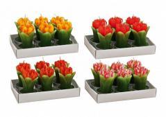 Home decor - tulipan - świeczka ozdobna kpl 6 (5cmx4cm)
