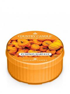 Country candle - pumpkin harvest - daylight (35g)