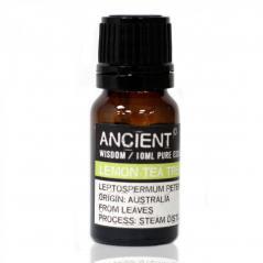 Ancient - cytryna i drzewo hrbaciane - olejek etetryczny (10ml)