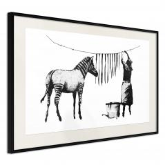Plakat - Banksy: Washing Zebra Stripes